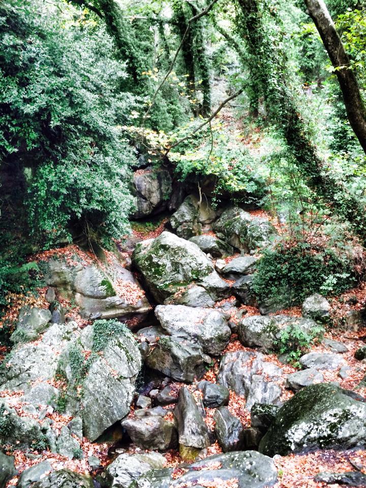 pelion-autumn-walk