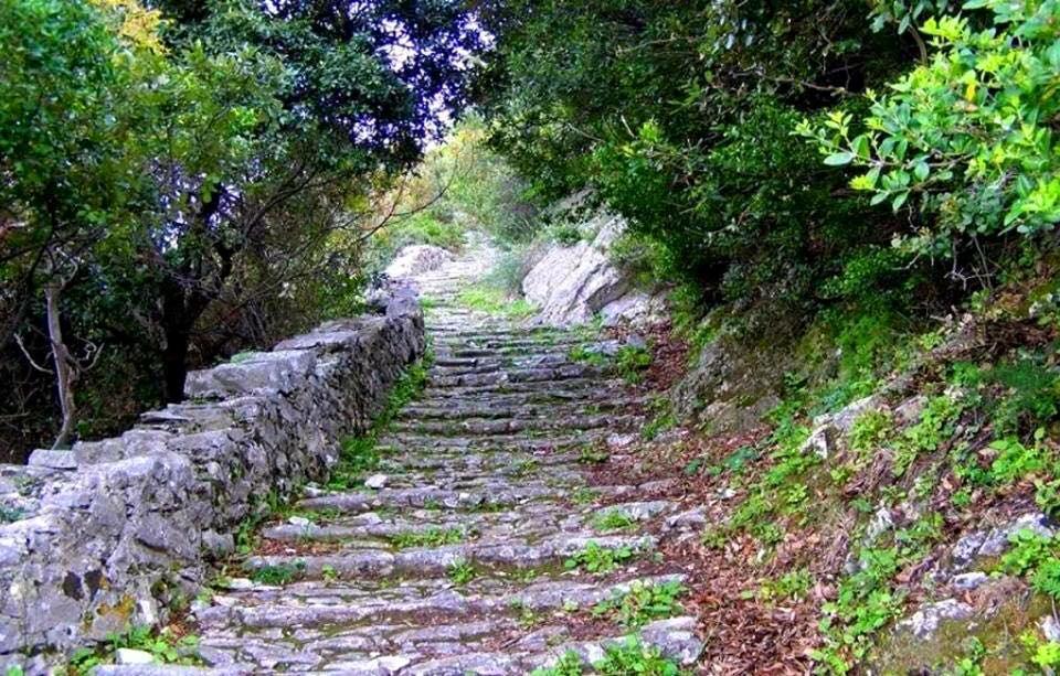 pelion-path