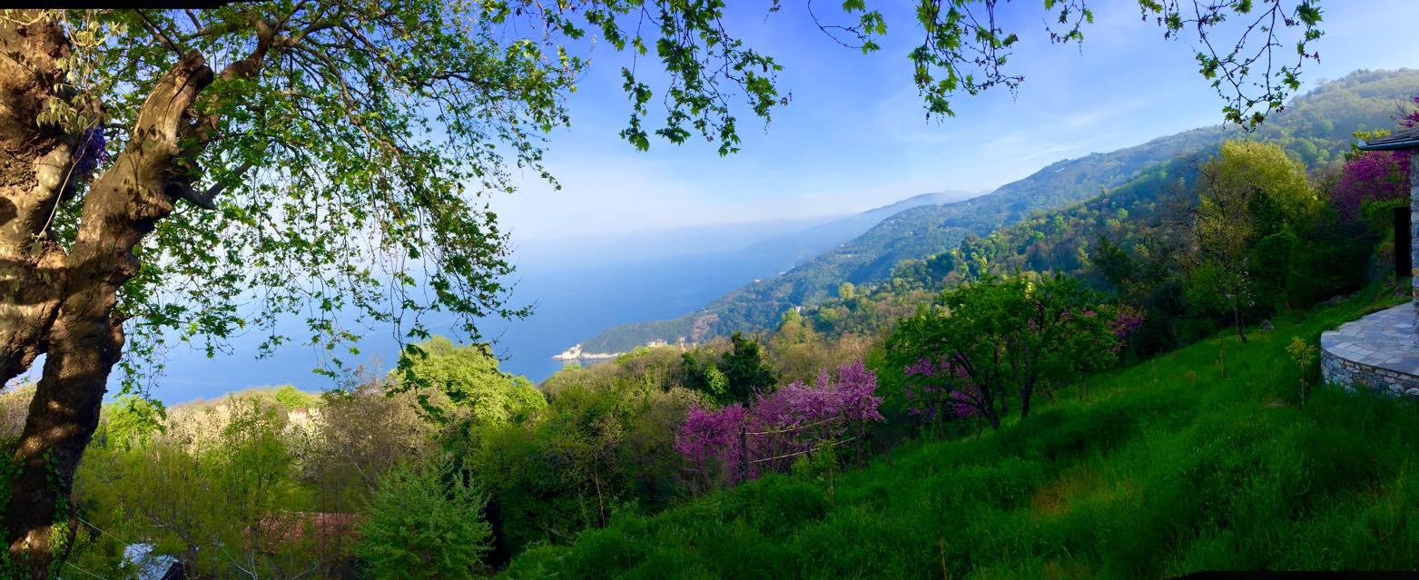 pelion-view