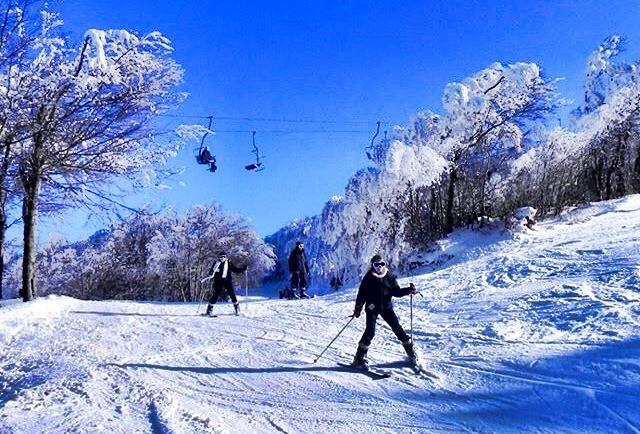 seasonal-ski